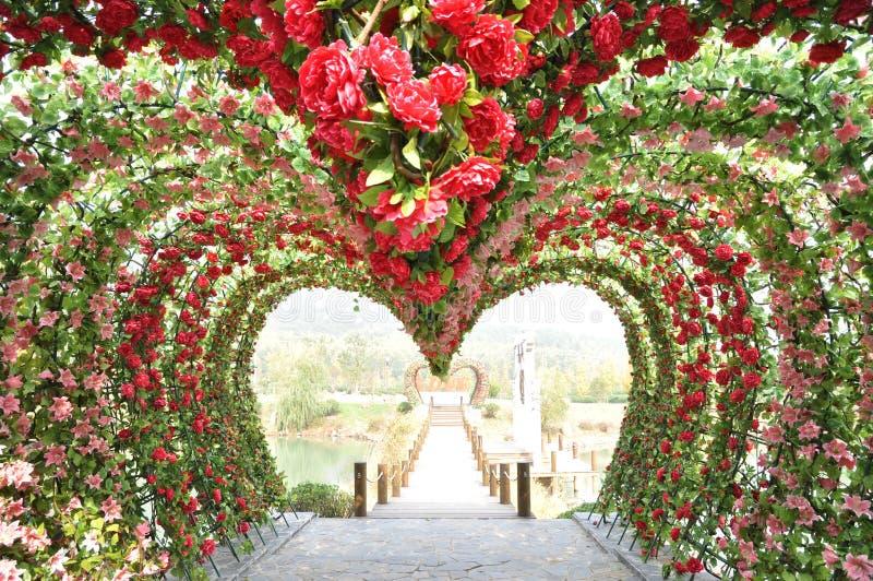 Trappe de forme de coeur de Rose photos stock
