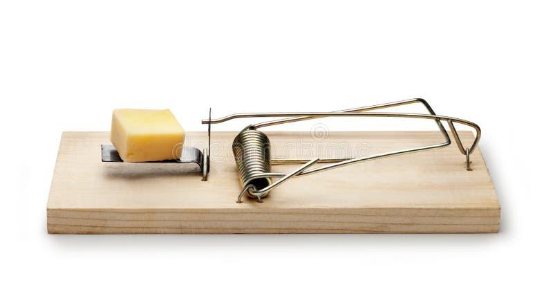 Trappe de fromage de souricière photo libre de droits