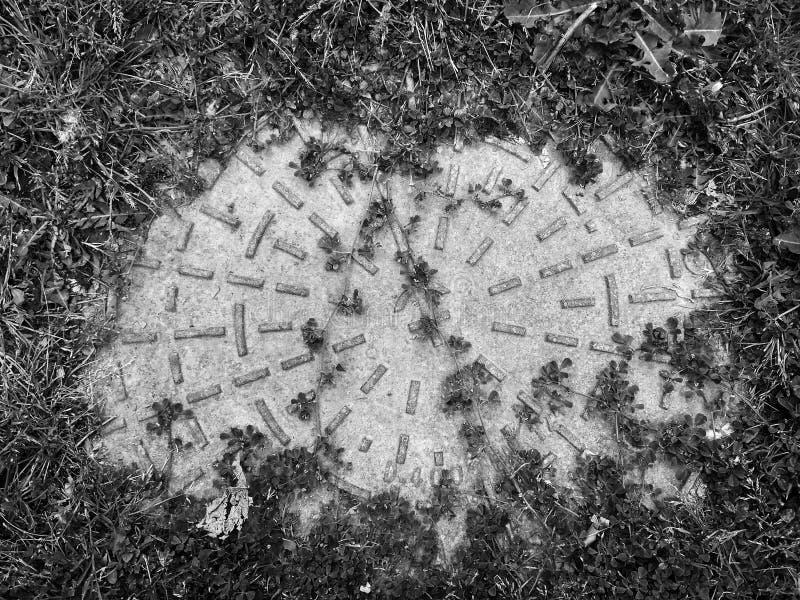 Trappe derrière la broussaille photo libre de droits