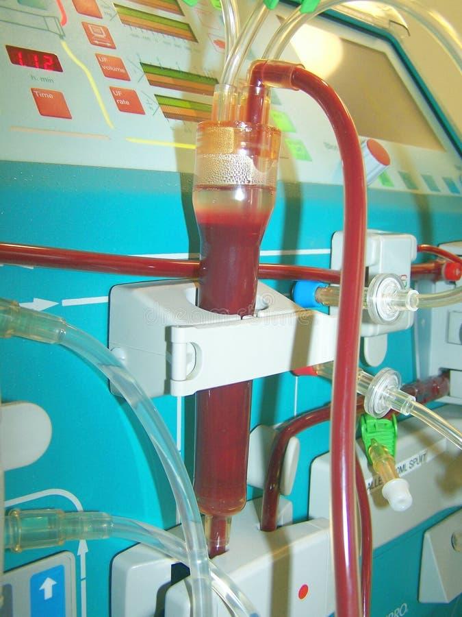 Trappe veineuse de bulle de moniteur de dialyse de hemo photographie stock