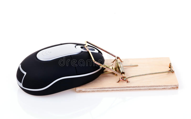 Download Trapped mouse stock image. Image of murder, isolated - 17730999
