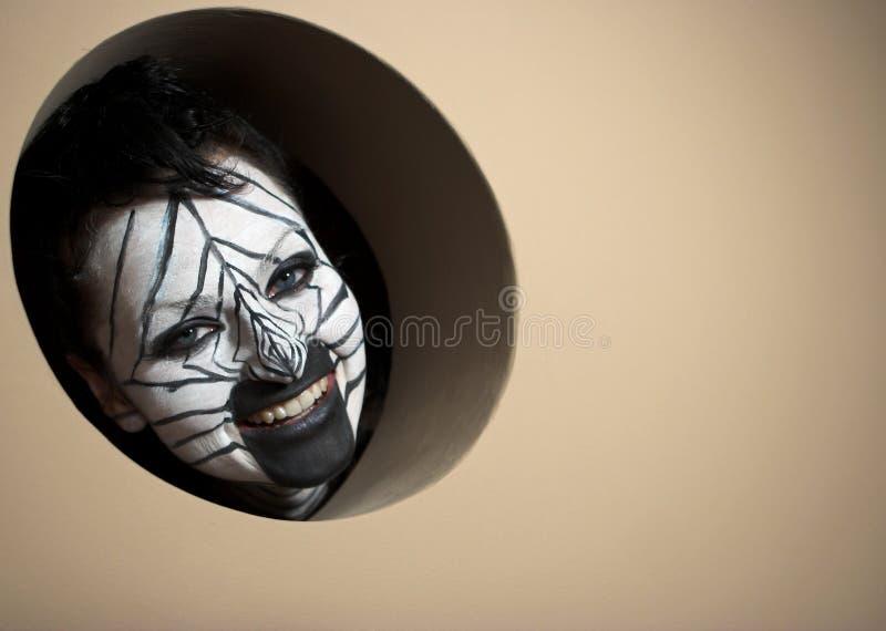 Trapped zebra stock photos