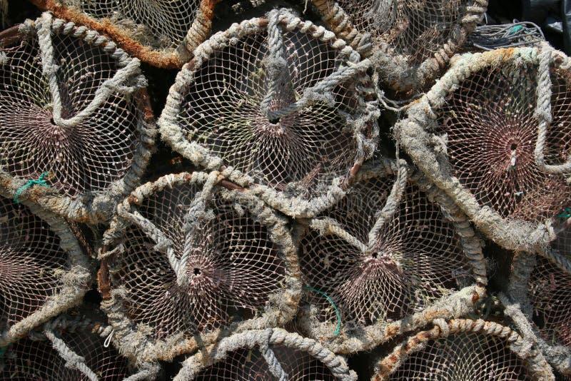 Trappes de langoustine image stock