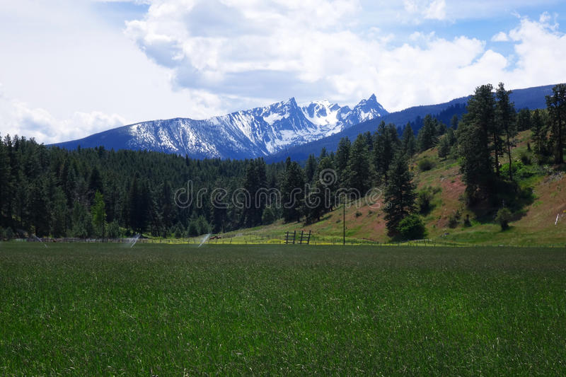 Trappeur Peak, montagnes de Bitterroot - Montana photos stock