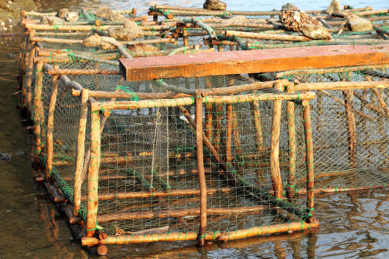 Trappola del pesce immagine stock libera da diritti