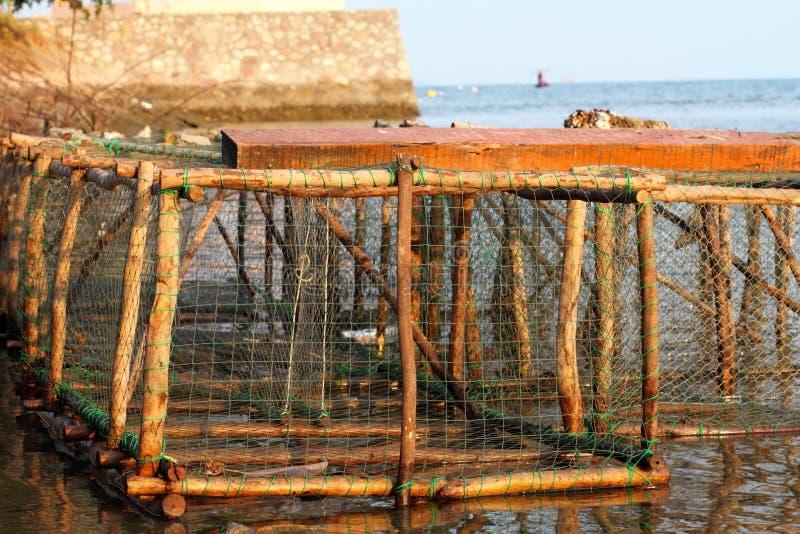 Trappola del pesce fotografia stock