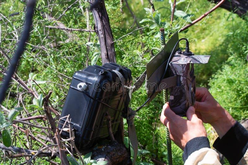 Trappola della macchina fotografica della correzione delle mani sull'albero per le immagini degli animali fotografia stock
