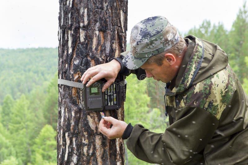 Trappola della macchina fotografica sull'albero fotografie stock