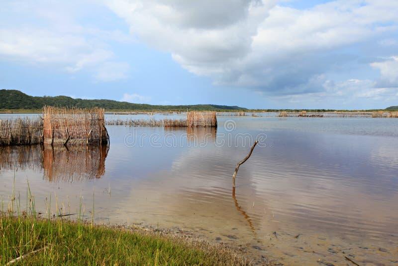 Trappole del pesce del Tonga fotografie stock