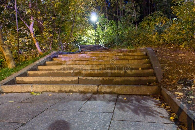 Trappuppgången i parkerar i perspektivet leder till överkanten lyktor royaltyfria bilder