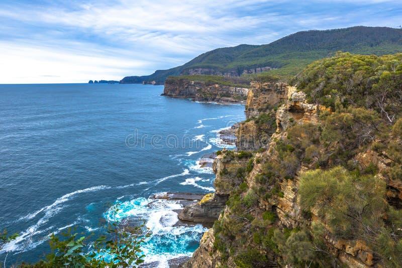 Trascuri nel parco nazionale di Tasman immagine stock libera da diritti