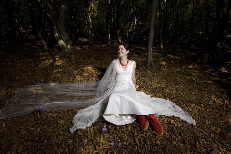 Trash the dress in autumn forest stock photos