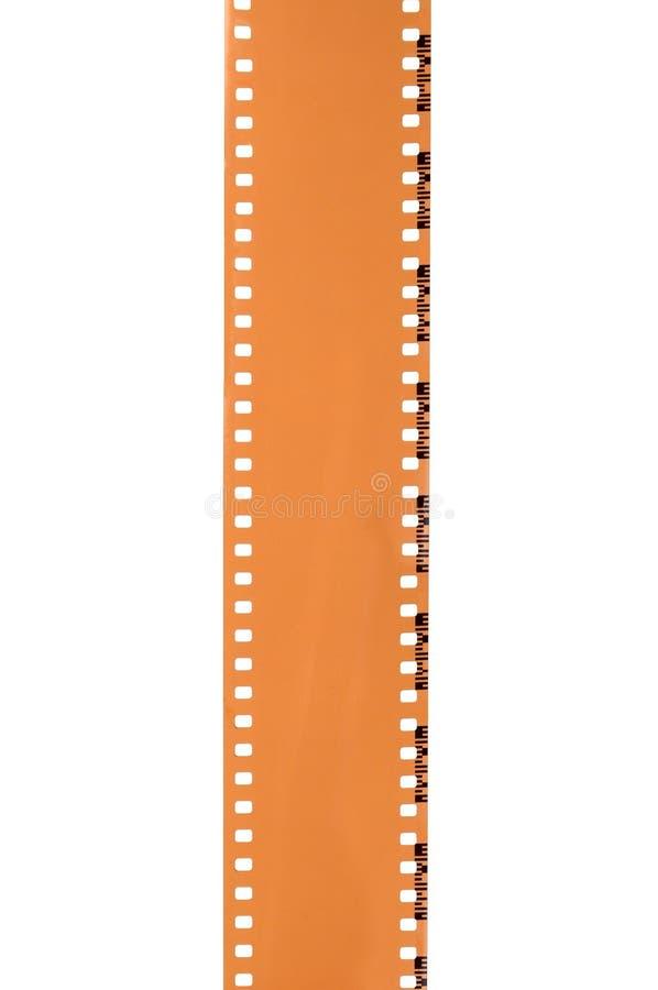 Trasparenza di pellicola fotografia stock libera da diritti