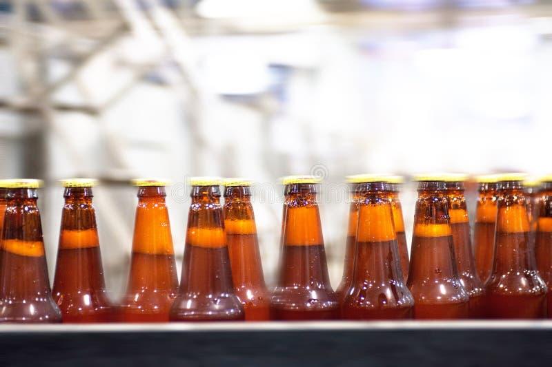 Trasportatore della birra immagine stock
