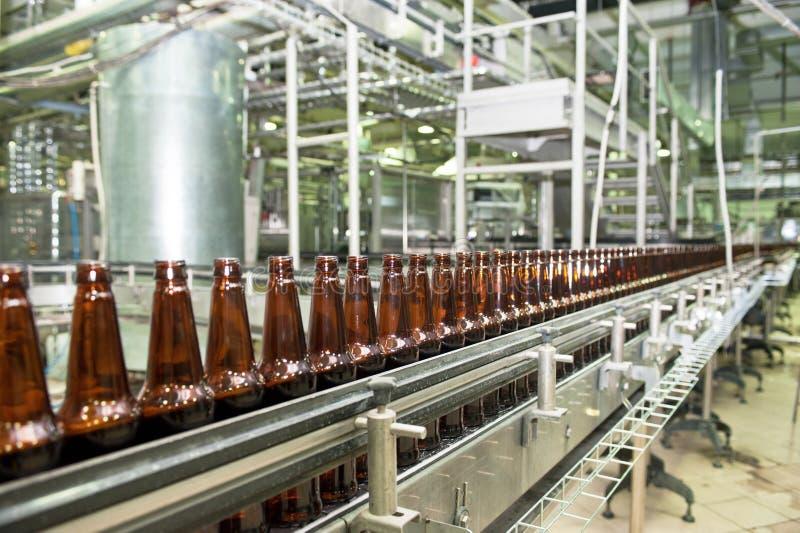 Trasportatore della birra fotografia stock libera da diritti