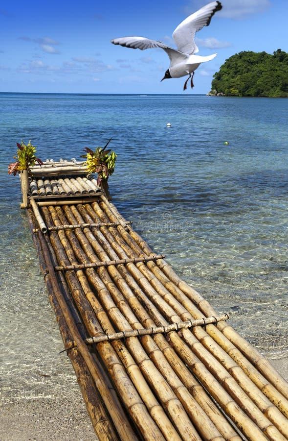 Trasporti sulla banca della laguna, Giamaica immagine stock libera da diritti