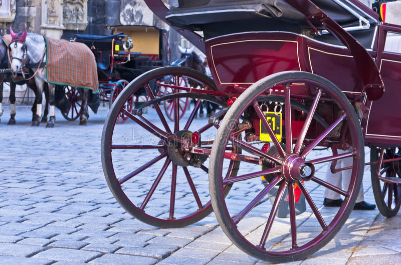 Trasporto del cavallo davanti alla cattedrale di St Stephen alla città di Vienna fotografia stock libera da diritti