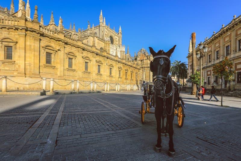 Trasporto del cavallo davanti a Catedral de Santa Maria de la Sede fotografie stock