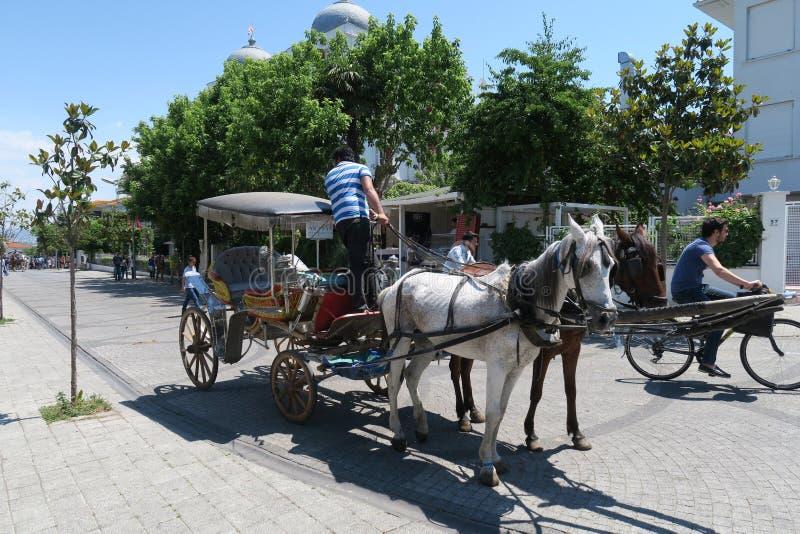 Trasporto del cavallo sull'isola di Buyukada - parte di principe Islands - vicino a Costantinopoli, Turchia fotografie stock libere da diritti