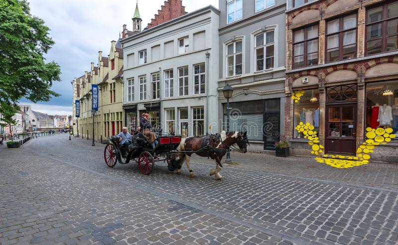 Trasporto del cavallo sulle vie del signore, Belgio fotografie stock
