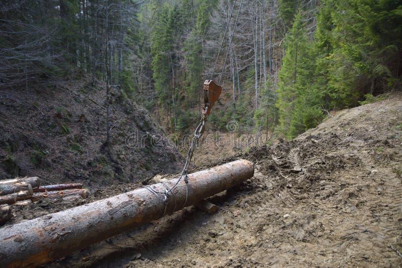 Trasporto del legname in macchina la cabina di funivia nel for Cabina di legno