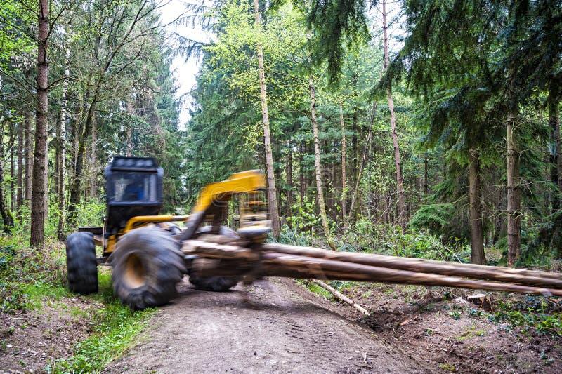 Trasporto del legno immagine stock libera da diritti