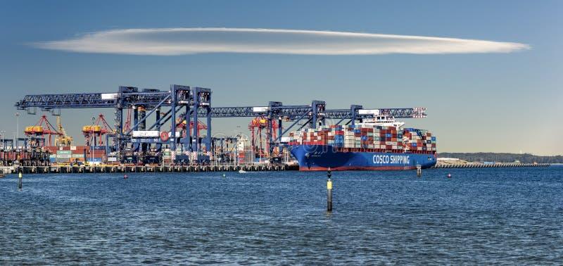 Trasporto di COSCO all'ancoraggio in botanica del porto, Australia fotografie stock