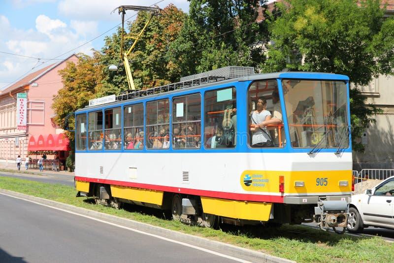 Trasporto pubblico di Seghedino immagine stock libera da diritti