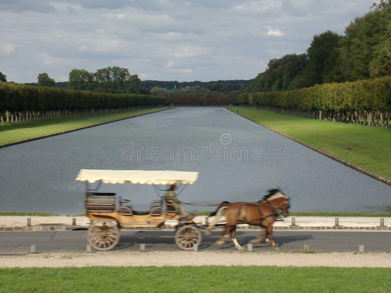 Trasporto veloce del cavallo in Versaille immagini stock