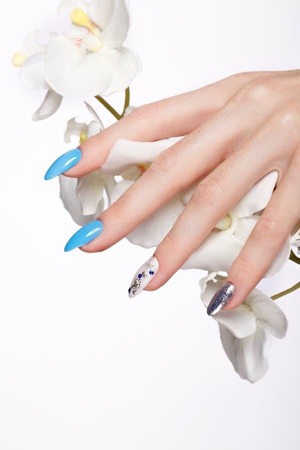 Tratamento de mãos azul do verão bonito na mão fêmea com flores Close-up imagem de stock