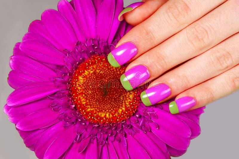 Tratamento de mãos da cor do Bi imagens de stock royalty free