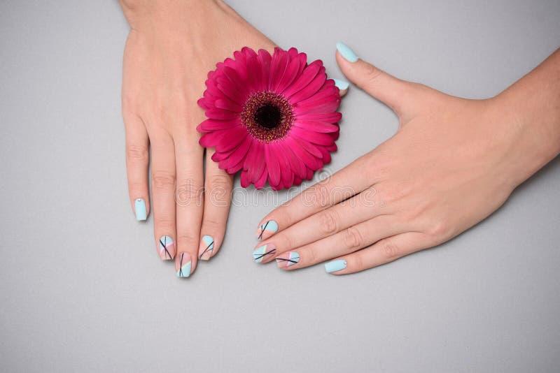 Tratamento de mãos delicado bonito nas mãos fêmeas, no fundo pastel imagens de stock royalty free