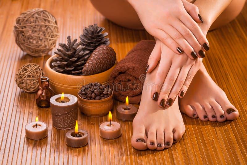 Tratamento de mãos e pedicure de Brown no branco imagens de stock