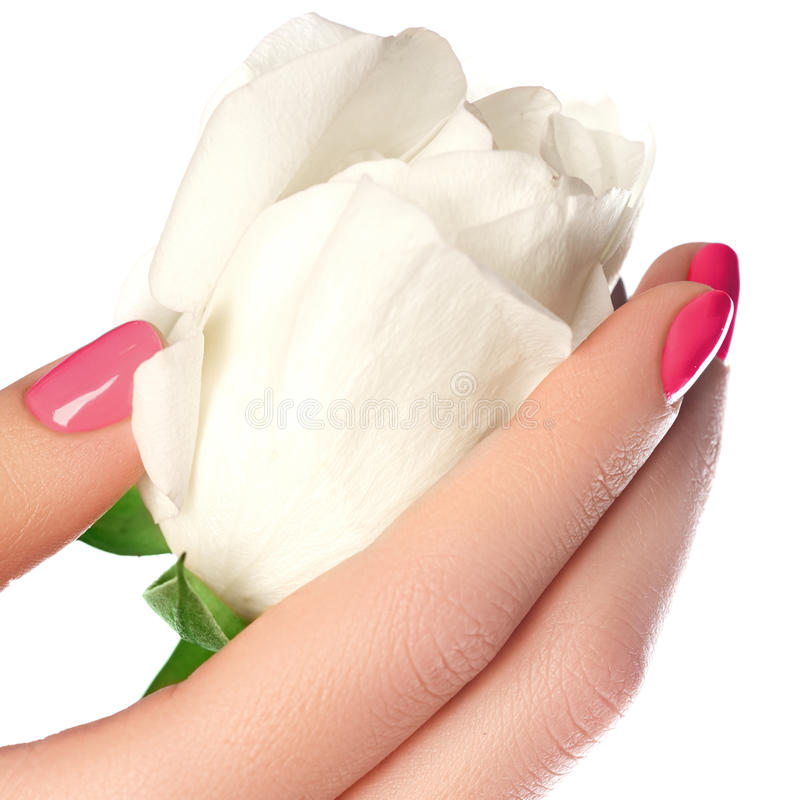 Tratamento de mãos, mãos & termas Mãos bonitas da mulher, pele macia, beautif foto de stock royalty free