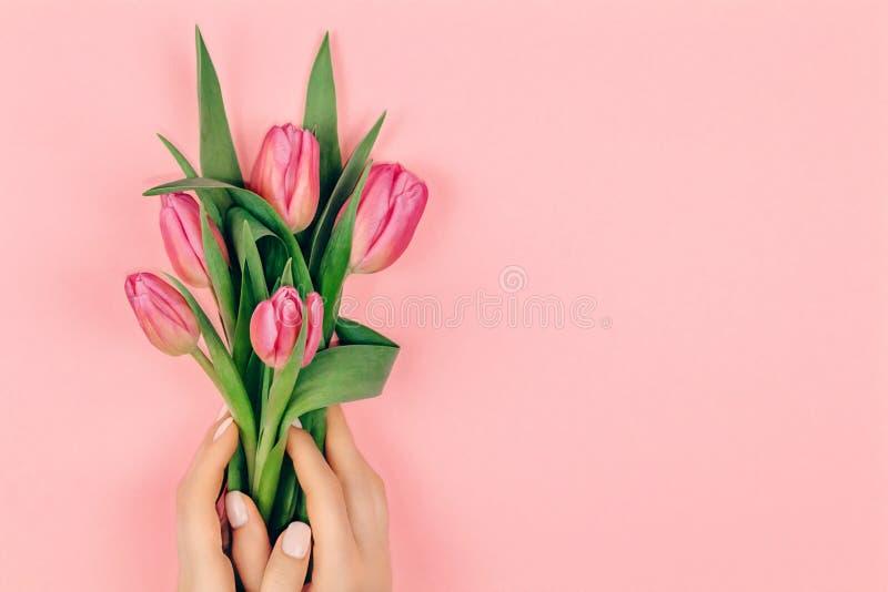 Tratamento de mãos na moda da mola Mãos fêmeas com projeto do prego no fundo cor-de-rosa que guarda flores cor-de-rosa da tulipa  fotografia de stock royalty free