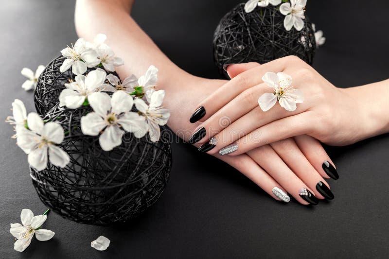 Tratamento de mãos preto e de prata com a flor de cerejeira no fundo preto Mulher com os pregos pretos cercados com flores branca foto de stock royalty free