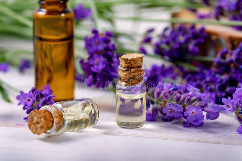 Tratamiento del cuidado de la belleza de las botellas de aceite esencial de la lavanda fotos de archivo