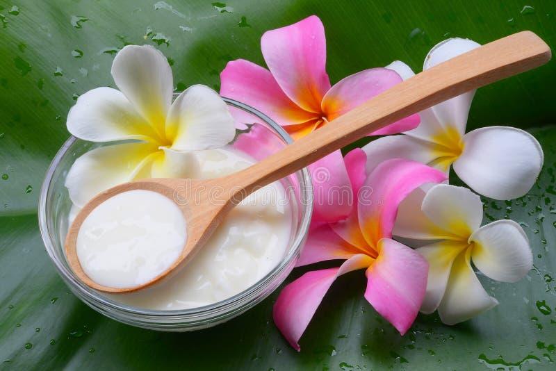 Tratamientos naturales del balneario del yogur de la mascarilla para la piel foto de archivo libre de regalías