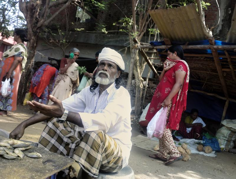 tratante indio de pequeños pescados secos imagenes de archivo