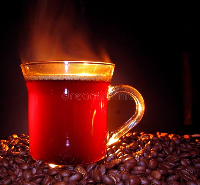 Tratar el café con vapor imagen de archivo