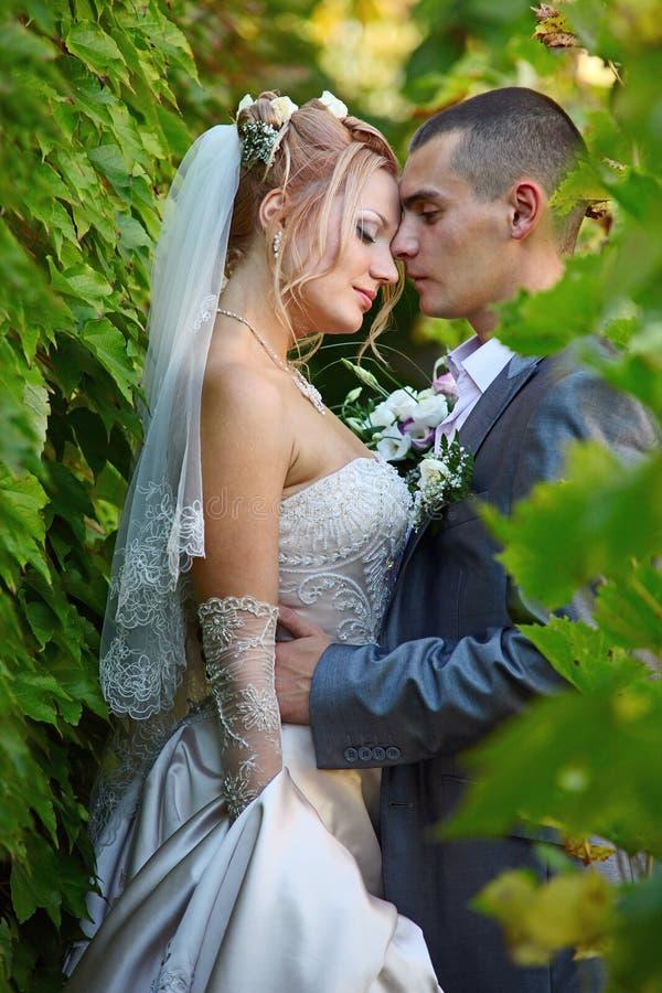 Trate el abrazo con suavidad de un par nuevo-casado foto de archivo libre de regalías