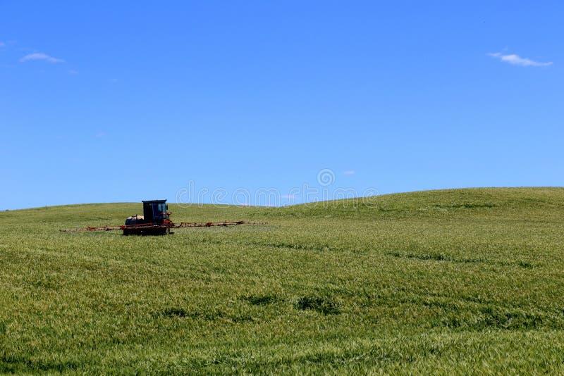 Trator de cultivo que ara e que pulveriza no campo de trigo fotografia de stock royalty free