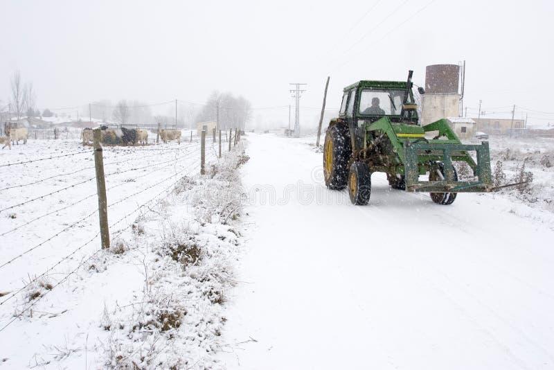 Trator do inverno fotos de stock