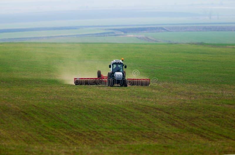 Trator em um corn-field verde imagens de stock