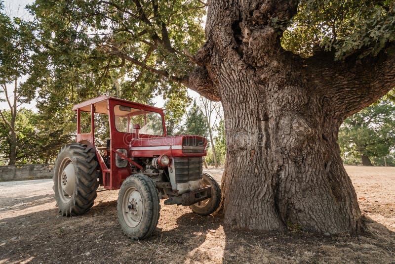 Trator estacionado sob uma árvore plana em um quadrado da vila imagens de stock royalty free