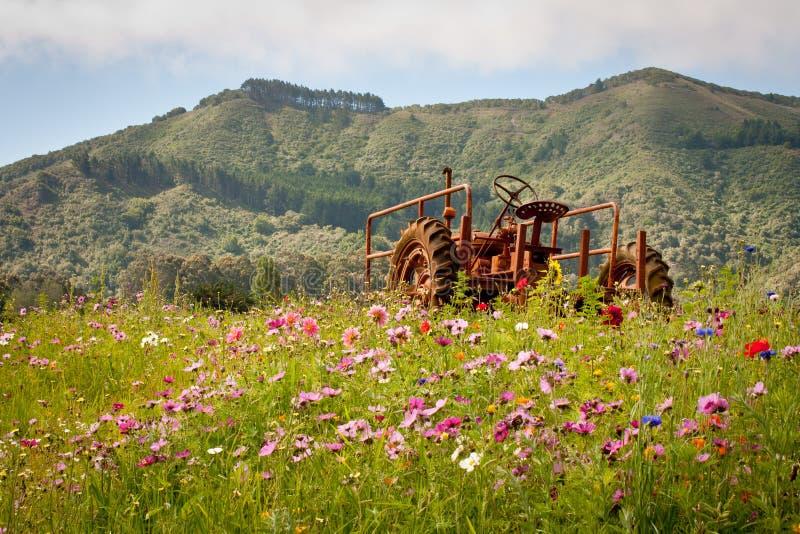 Download Trator no campo de flor imagem de stock. Imagem de mola - 26515333