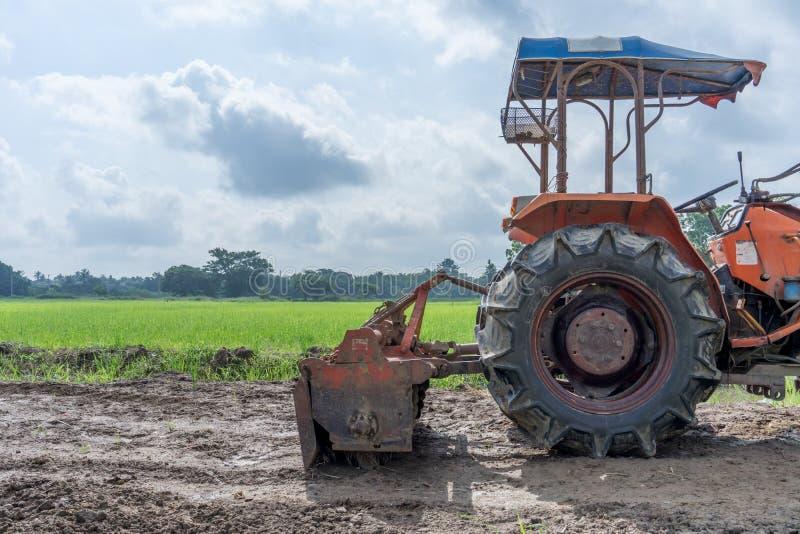 Trator no campo do arroz fotos de stock royalty free