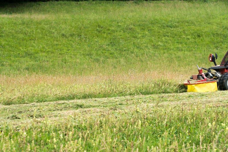 Trator pequeno com a segadeira na parte dianteira que corta um prado do wildflower do montanhês íngreme nos cumes para o feno imagens de stock