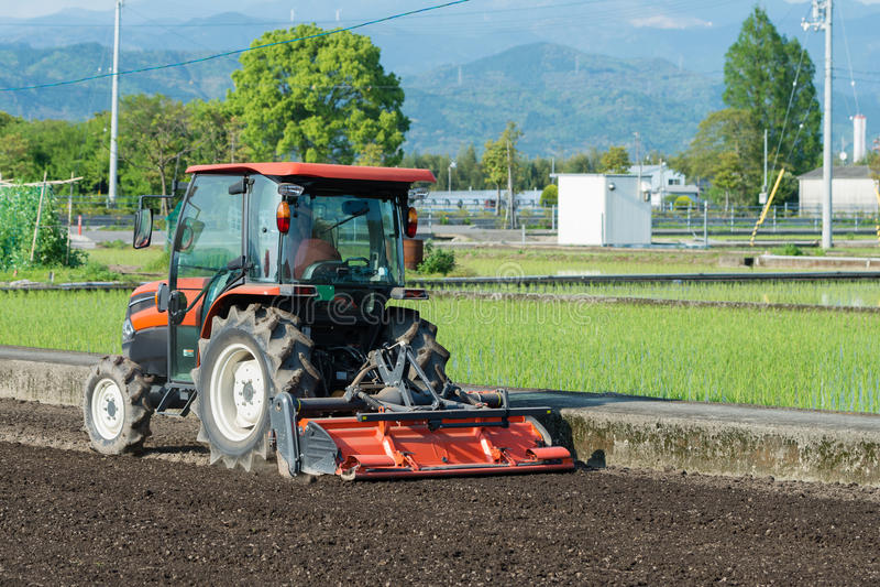 Trator que lavra um campo do arroz foto de stock