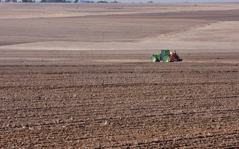 Trator que planta o trigo imagens de stock